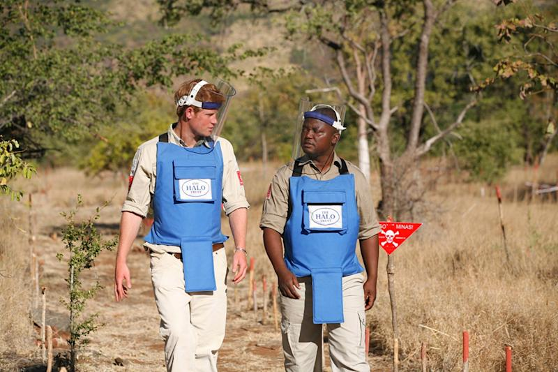 CAHORA BASSA, MOZAMBIQUE - JUNE 21: In this handout image provided by The HALO Trust, Prince Harry is seen with a deminer from The HALO Trust, a British charity dedicated to removal of landmines, on June 21, 2010 in Cahora Bassa, Mozambique. Prince Harry is following in his late mother's footsteps, Princess Diana, who visited the same charity in Angola eight months before her death. Prince Harry spent two days with the charity learning the first stages of landmine clearance and detonated mines himself under supervision from deminers. (Handout Photo by The HALO Trust/Getty Images)