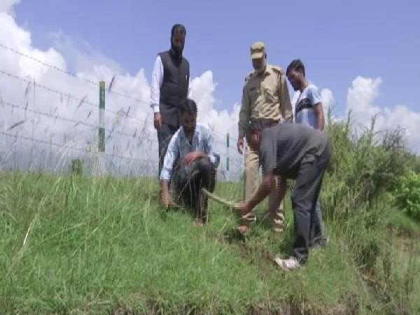 Forest department officials planting saplings. (Photo/ANI)