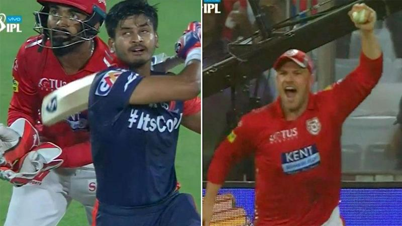 You beauty! Pic: IPL