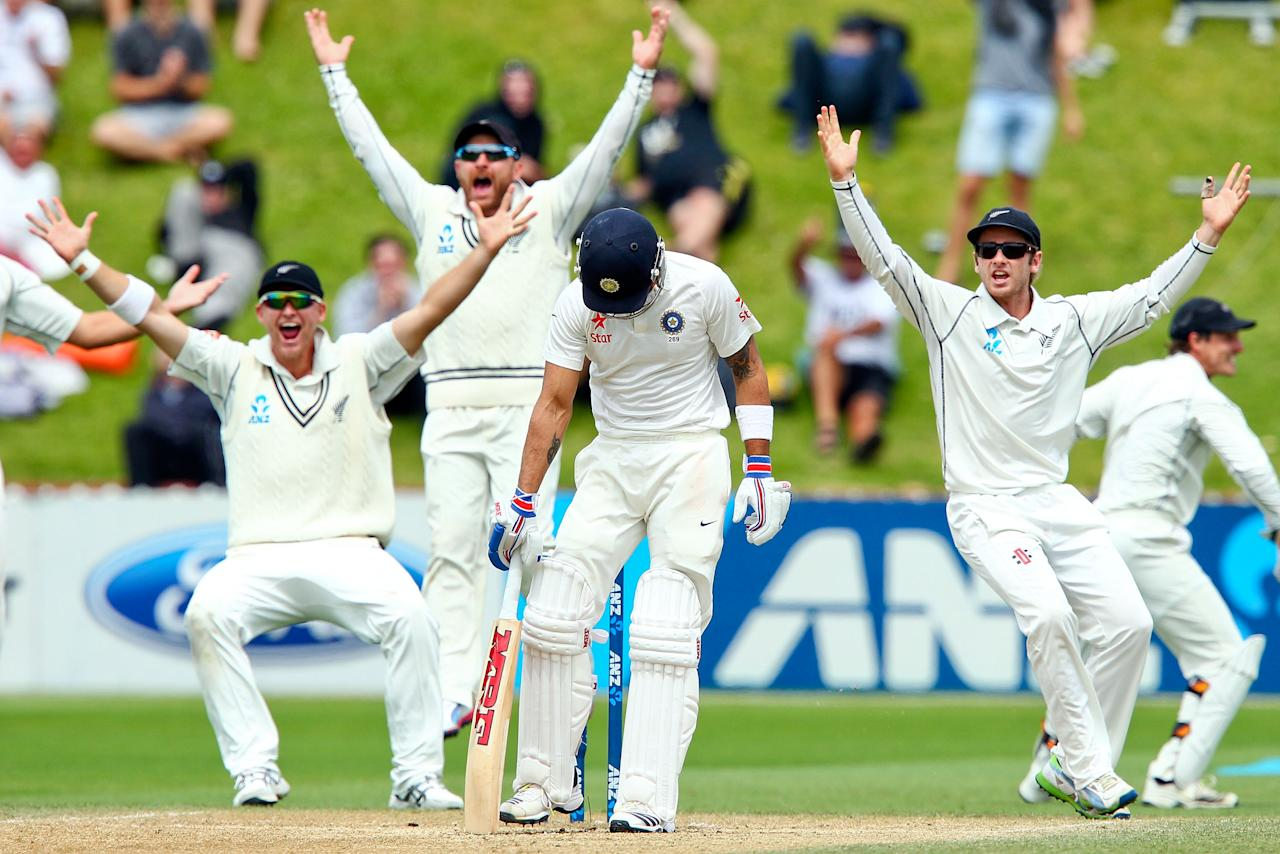 WELLINGTON, NEW ZEALAND - FEBRUARY 18:  Virat Kohli of India stands his ground as Corey Anderson, Brendon McCullum and Kane Williamson of New Zealand appeal unsuccessfully during day five of the 2nd Test match between New Zealand and India on February 18, 2014 in Wellington, New Zealand.  (Photo by Hagen Hopkins/Getty Images)