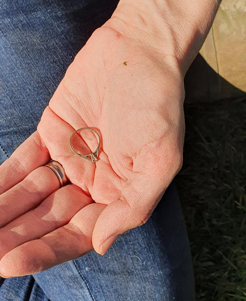 The nurse lost the ring two and a half years ago while hanging out the washing. (PA)