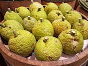 "<p>Another great source of vitamin C, breadfruit also has a fair amount of the minerals <a href=""https://www.goodhousekeeping.com/health/diet-nutrition/g2065/potassium-superfoods/"" rel=""nofollow noopener"" target=""_blank"" data-ylk=""slk:potassium"" class=""link rapid-noclick-resp"">potassium</a> and magnesium. It's a particularly interesting fruit, because when it's unripe it can be cooked like a <a href=""https://www.goodhousekeeping.com/food-recipes/g1633/potato-recipes/"" rel=""nofollow noopener"" target=""_blank"" data-ylk=""slk:potato"" class=""link rapid-noclick-resp"">potato</a>, but when it's ripe it can be used in a dessert. Another thing that's unusual about breadfruit: It's a terrific source of <a href=""https://link.springer.com/article/10.1007/s00726-015-1914-4"" rel=""nofollow noopener"" target=""_blank"" data-ylk=""slk:protein"" class=""link rapid-noclick-resp"">protein</a>.</p>"