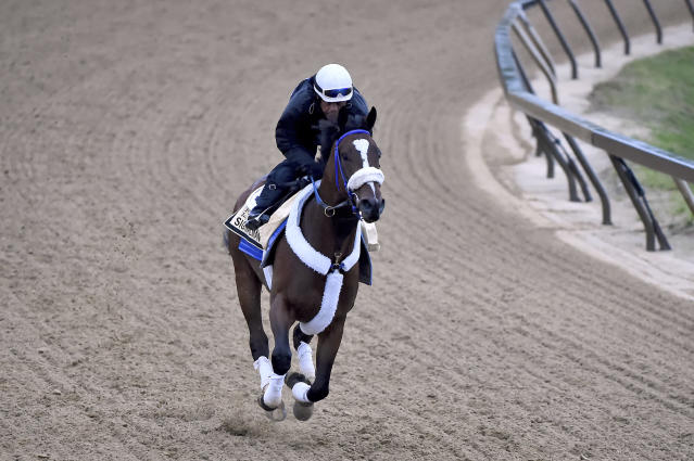 Signalman exercises in preparation for the Preakness Stakes horse race, Thursday, May 16, 2019, at Pimlico Race Course in Baltimore. The race is scheduled to take place Saturday, May 18. (AP Photo/Will Newton)