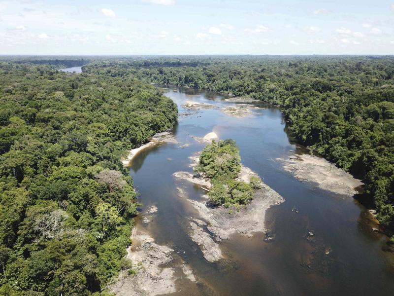 This undated photo provided by researchers in September 2019 shows typical electric eel highland habitat in Suriname's Coppename River. Two newly discovered electric eel species, Electrophorus electricus and E. voltai, live in the highland regions of the Amazon. (Carlos David de Santana via AP)