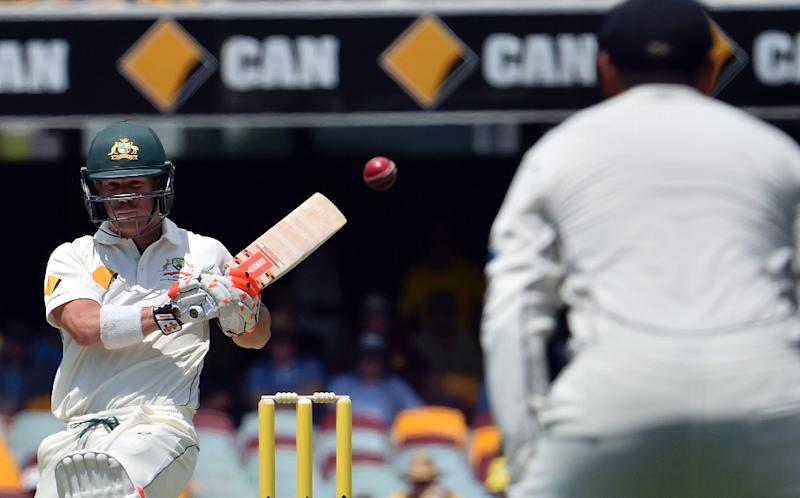 Australia's David Warner (pictured) and Usman Khawaja both scored centuries on the opening day of the first Test against New Zealand in Brisbane on November 5, 2015 (AFP Photo/Saeed Khan)