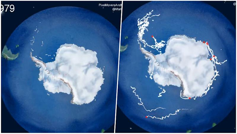 40 Years of Icebergs Breaking Off in Antarctica Captured in a 50-Second Clip (Watch Video)