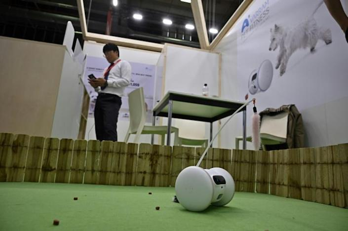 A Pet Fitness robot can keep track of how much activity the animal has had (AFP Photo/Tobias SCHWARZ)