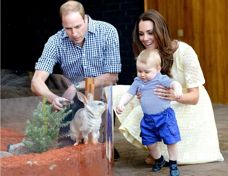 Prince William, Prince George and Kate Middleton in 2014 | Tim Rooke/REX/Shutterstock