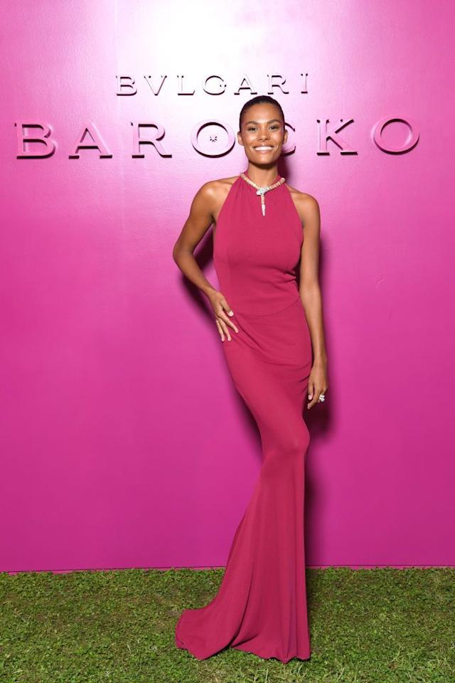 <p>The model wore a fuchsia gown by Maison Alaïa with a Bulgari necklace for the fashion show. </p>