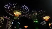 <p>If this place looks familiar, it's probably because you've seen it in <strong>Crazy Rich Asians</strong>, now you can <span>Virtually Tour the Gardens by the Bay in Singapore</span> ($70) and live out your rom-com dreams. </p>