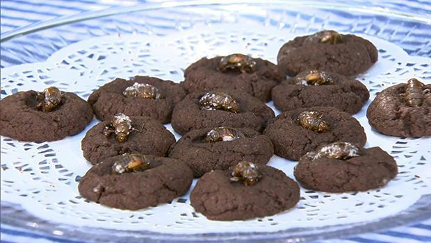 Emergence Cookies feature a peculiar ingredient: Cicadas, a protein source that is low in fat and cholesterol. / Credit: CBS News