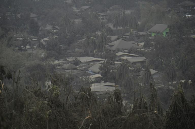 Houses in Laurel town have been covered with mud and ash from the Taal volcano in the Philippines (AFP Photo/Ted ALJIBE)