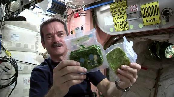 Canadian astronaut Chris Hadfield shows what spinach in space looks like when it is still dehydrated (right) and ready to eat after rehydration (left) in a space cooking lesson during his Expedition 35 mission in March 2013.