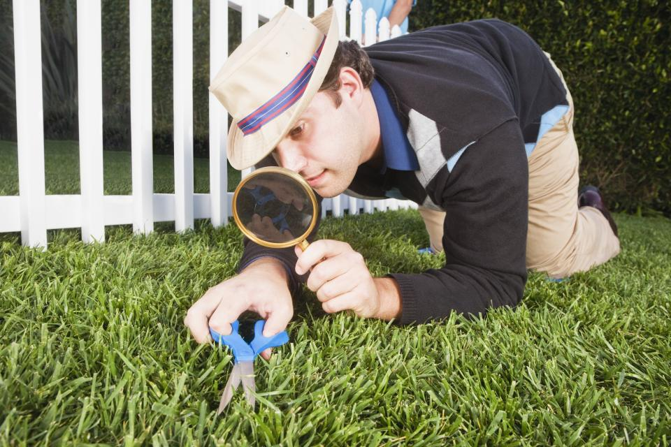 A well-kept lawn is a good place to start (Getty Creative)