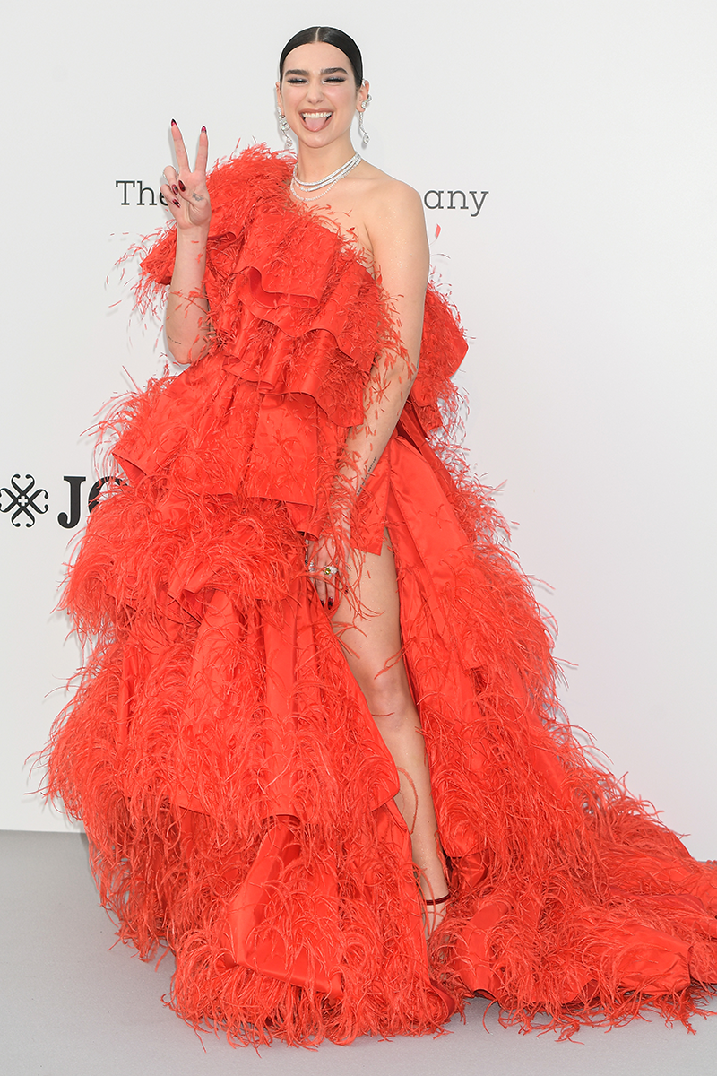 <p>This is definitely one of Dua's most dramatic looks, with the singer donning a feathery scarlet Valentino Haute Couture gown at the 2019 amfAR Gala.</p>