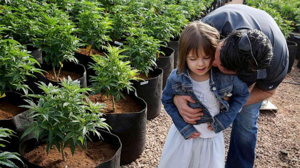 PHOTO: Matt Figi hugs his daughter Charlotte as they walk around inside a greenhouse for a special strain of medical marijuana known as Charlotte's Web at a grow location in a remote spot in the mountains west of Colorado Springs, Colo. (Brennan Linsley/AP, FILE)