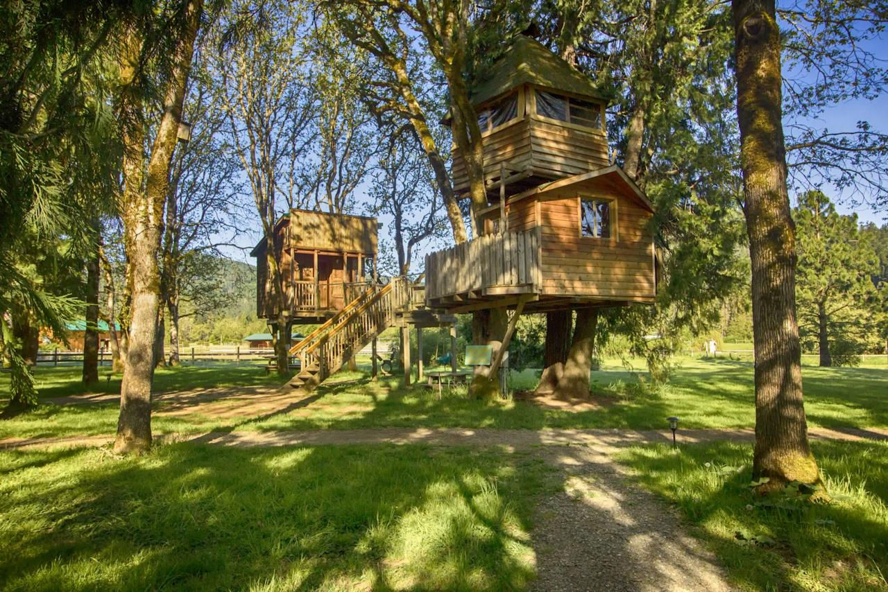 "<p>Celebrating its 30th year of operation this year, <a href=""http://www.treehouses.com"">Out'n'About Treehouse Treesort</a> offers 13 different treehouses that people can rent out for overnight stays, including one of the largest concentrations of treehouses and platforms in the world.  They are open all year round and are a family friendly, one-of- a kind ""treesort"" that offers fun for kids of all ages. To enhance the thrill of staying in a treehouse, the company offers various activities to enjoy during your stay from ziplines to horseback riding that are sure to be a fun experience for everyone.</p>"