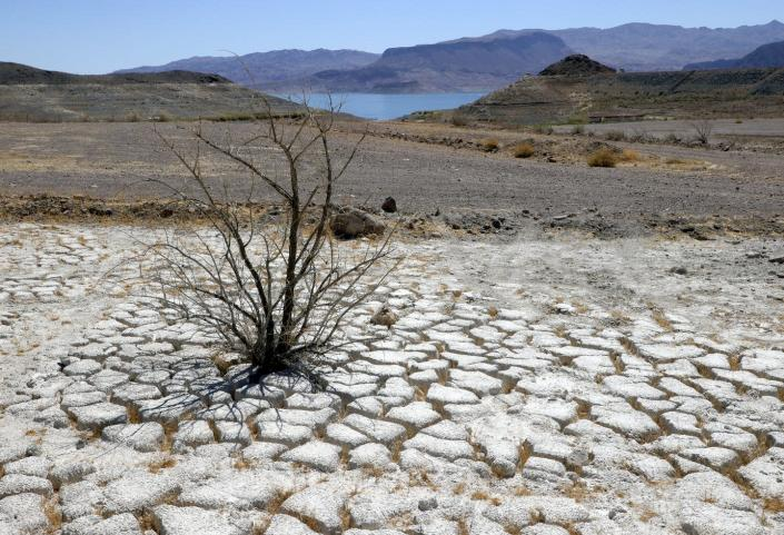 """<span class=""""caption"""">Lake Mead, which serves seven U.S. states and three Mexican states, is drying up.</span> <span class=""""attribution""""><a class=""""link rapid-noclick-resp"""" href=""""https://www.gettyimages.com/detail/news-photo/lake-mead-is-seen-in-the-distance-behind-a-dead-creosote-news-photo/1323266340"""" rel=""""nofollow noopener"""" target=""""_blank"""" data-ylk=""""slk:Ethan Miller/Getty Images"""">Ethan Miller/Getty Images</a></span>"""