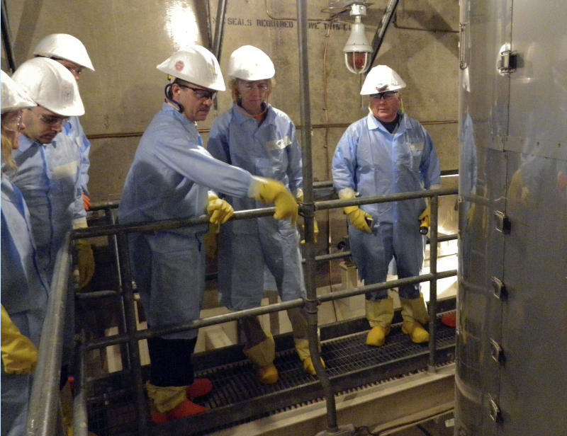 Panel: Nuclear to remain key Japan energy source
