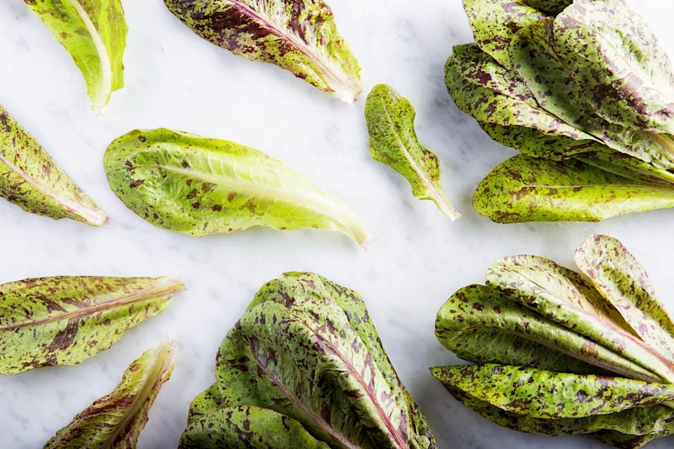 """<h1 class=""""title"""">EP_06192015_SpeckledLakeTroutRomaine_003_6x4.jpg</h1> <cite class=""""credit"""">Photo by Chelsea Kyle, food styling by Katherine Sacks</cite>"""