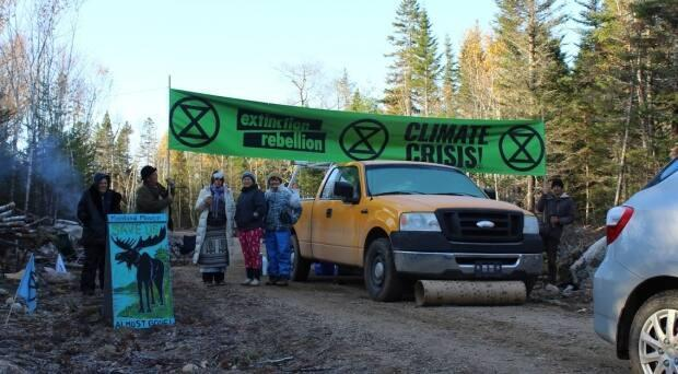 Nine protesters were arrested in Digby County in December after calling on the provincial government to protect a mainland moose habitat.