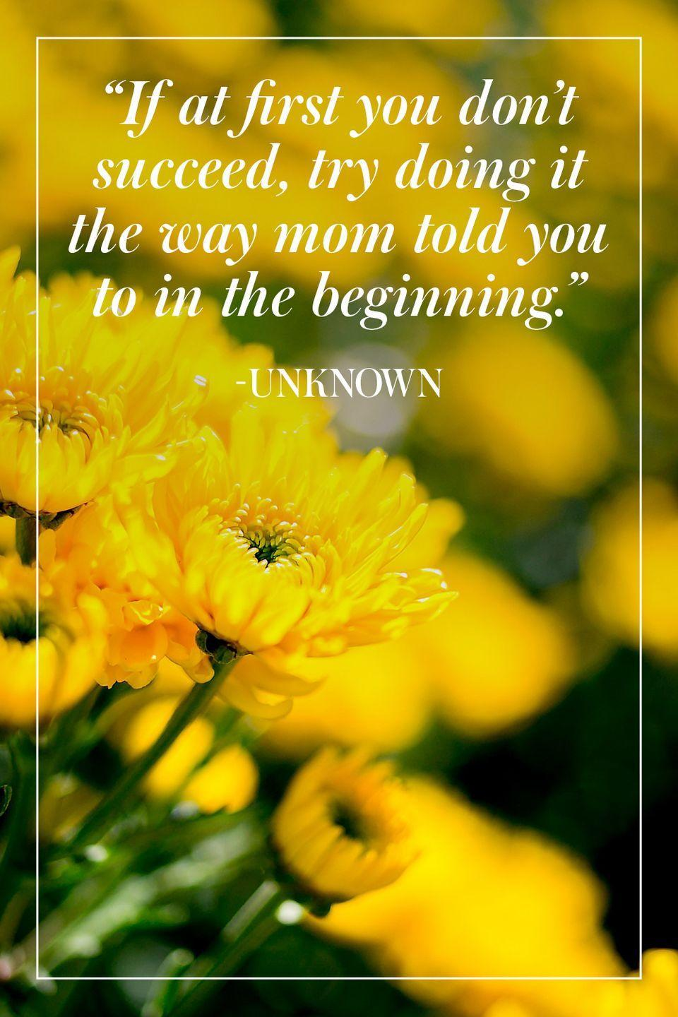 """<p>""""If at first you don't succeed, try doing it the way mom told you to in the beginning."""" </p><p>- Unknown</p>"""
