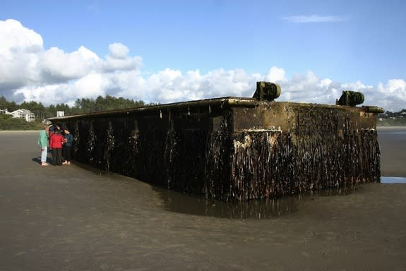 The dock that washed ashore in Oregon is 66 feet long and covered with an estimated ton of marine life.