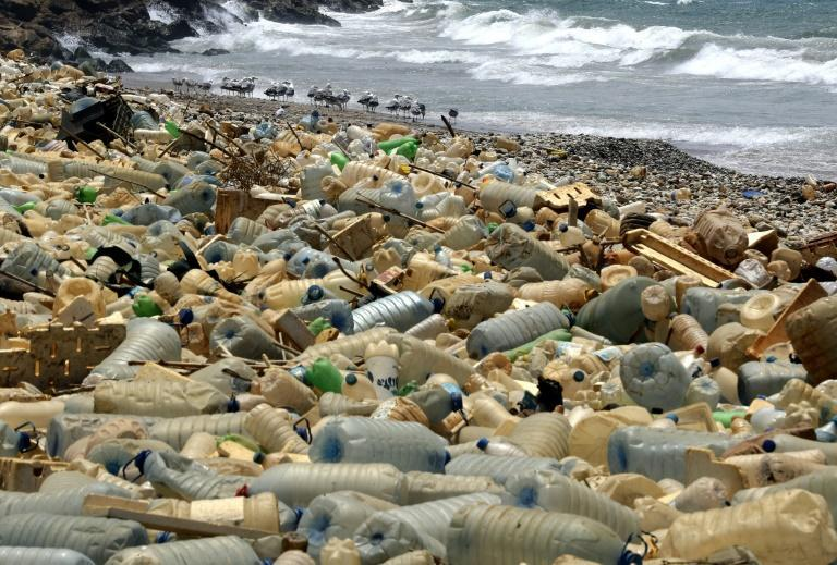 More than one million tonnes of plastic have already accumulated in the Mediterranean Sea, the report estimates