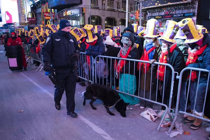 An NYPD officer K-9 unit patrols during New Year's Eve celebrations in Times Square (AFP Photo/DON EMMERT)