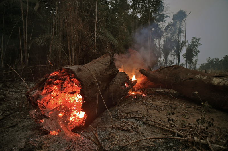 View of fire in the Amazon rainforest, near Abuna, Rondonia state, Brazil, on August 24, 2019. (Photo: CARL DE SOUZA/AFP/Getty Images)