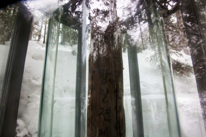 In this Tuesday, April 3, 2012 photo, a tree, protected by a glass enclosure to preserve the Korean writing on it, stands in a forest at a former secret military camp during the fight against the Japanese and the site of what North Koreans say is the home of the late North Korean leader Kim Il Sung and the birthplace of his son and late leader Kim Jong Il at the foot of Mount Paektu. Trees like this were stripped of their bark by anti-Japanese fighters and written messages were left for one another on their trunks. (AP Photo/David Guttenfelder)