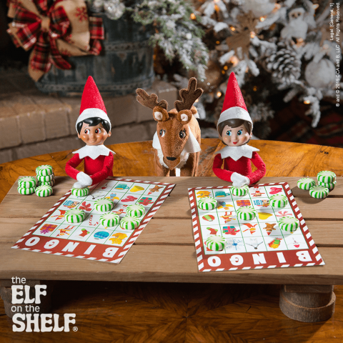 """<p>Candy and a stuffed toy reindeer make this idea hard to beat. But it's the free printable that has us truly sold!</p><p><strong>Get the tutorial at <a href=""""https://www.elfontheshelf.com/elf-ideas/scout-elf-bingo"""" rel=""""nofollow noopener"""" target=""""_blank"""" data-ylk=""""slk:Elf on the Shelf"""" class=""""link rapid-noclick-resp"""">Elf on the Shelf</a>.</strong></p><p><a class=""""link rapid-noclick-resp"""" href=""""https://www.amazon.com/White-Cardstock-Paper-Sheets-220gsm/dp/B07BKQKKLZ?tag=syn-yahoo-20&ascsubtag=%5Bartid%7C10050.g.22690552%5Bsrc%7Cyahoo-us"""" rel=""""nofollow noopener"""" target=""""_blank"""" data-ylk=""""slk:SHOP CARD STOCK"""">SHOP CARD STOCK</a></p>"""