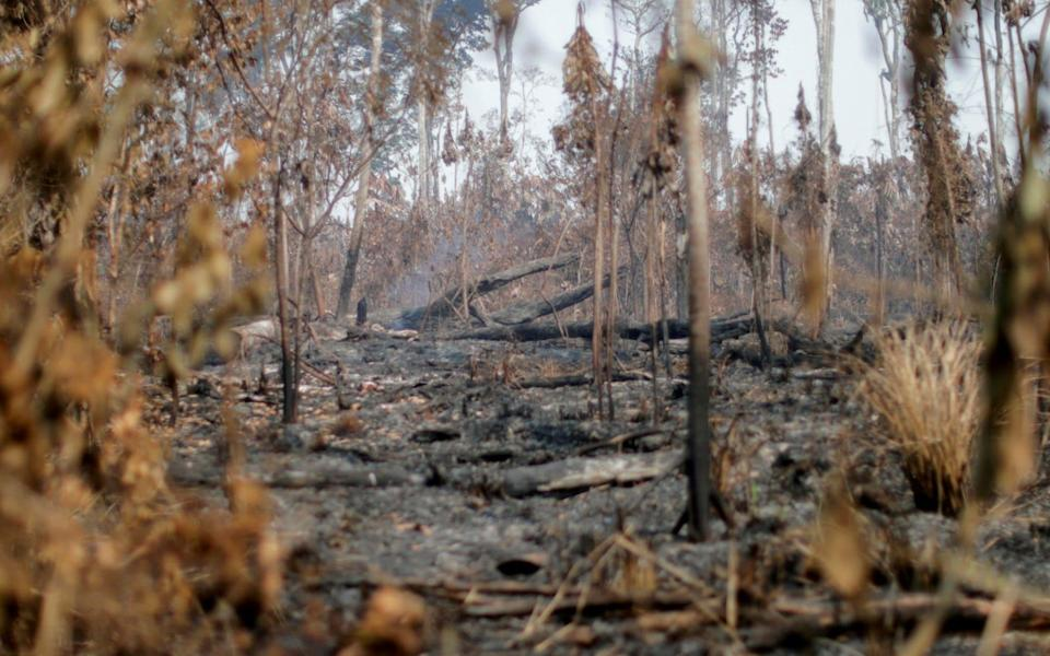 A burning tract of the Amazon jungle - Ueslei Marcelino/REUTERS