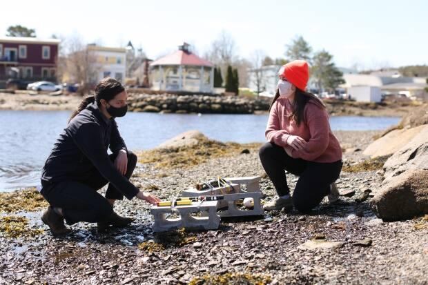 Samantha Battaglia, left, helps drop cinder blocks outfitted with measuring tools into the water off Mahone Bay to help collect data for the living shoreline project.