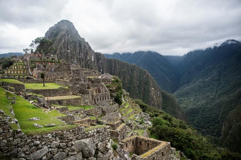 Elusive Andean bears have been spotted at the archaeological site of Machu Picchu