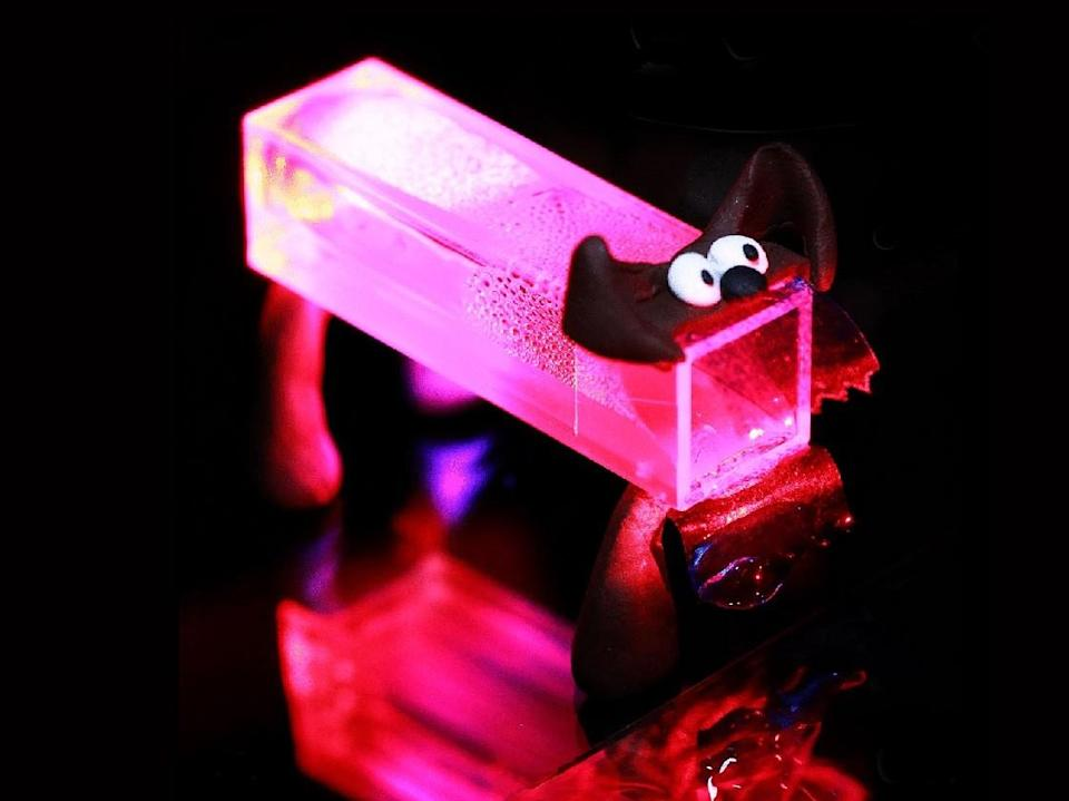 An artificial Pavlov's dog created from programmable liquid crystal polymer networks: Matter