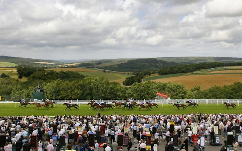 Limited crowds were originally expected to return to Goodwood on Saturday - PA