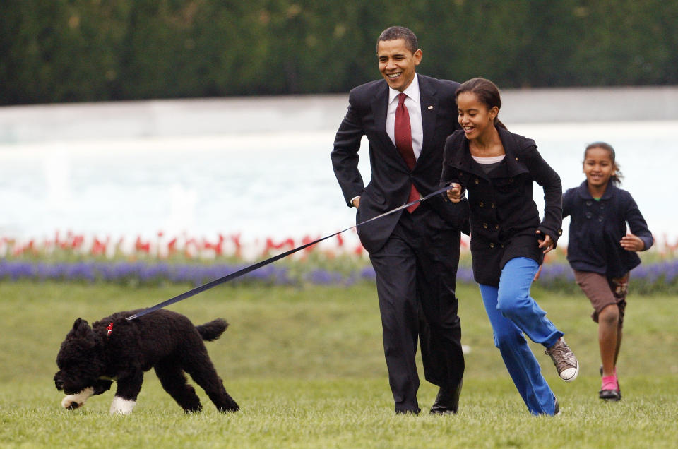 FILE - Int his April 14, 2009, file photo Malia Obama runs with Bo, followed by President Barack Obama and Sasha Obama, on the South Lawn of the White House in Washington. Former President Barack Obama's dog, Bo, died Saturday, May 8, 2021, after a battle with cancer, the Obamas said on social media. (AP Photo/Ron Edmonds, File)