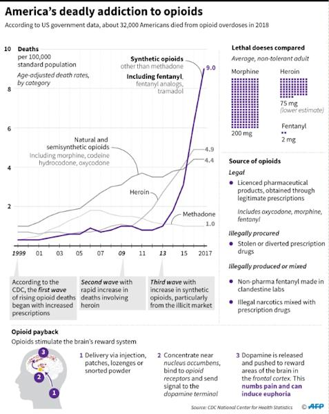 Chart showing US drug overdose death rates by opioid category, source of opioids, and how they work. (AFP Photo/Gal ROMA)