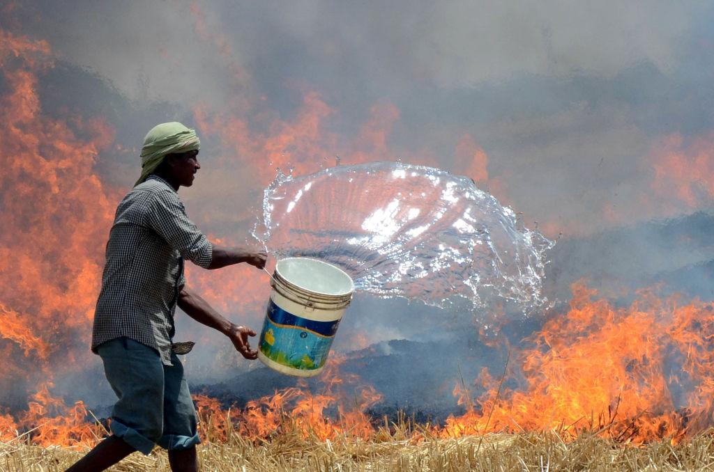 <p>Fire in wheat fields on Sidwan bet adjacent to the venue where Punjab IG Arpit Shukla addressed a public meeting near Jagraon on April 19, 2017 in Ludhiana, India. (Photo by Jagtinder Singh Grewal/Hindustan Times via Getty Images) </p>