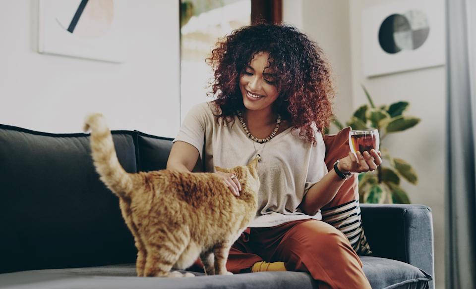 A pet-nup can help avoid conflict after a relationship break-up. (Getty Images)
