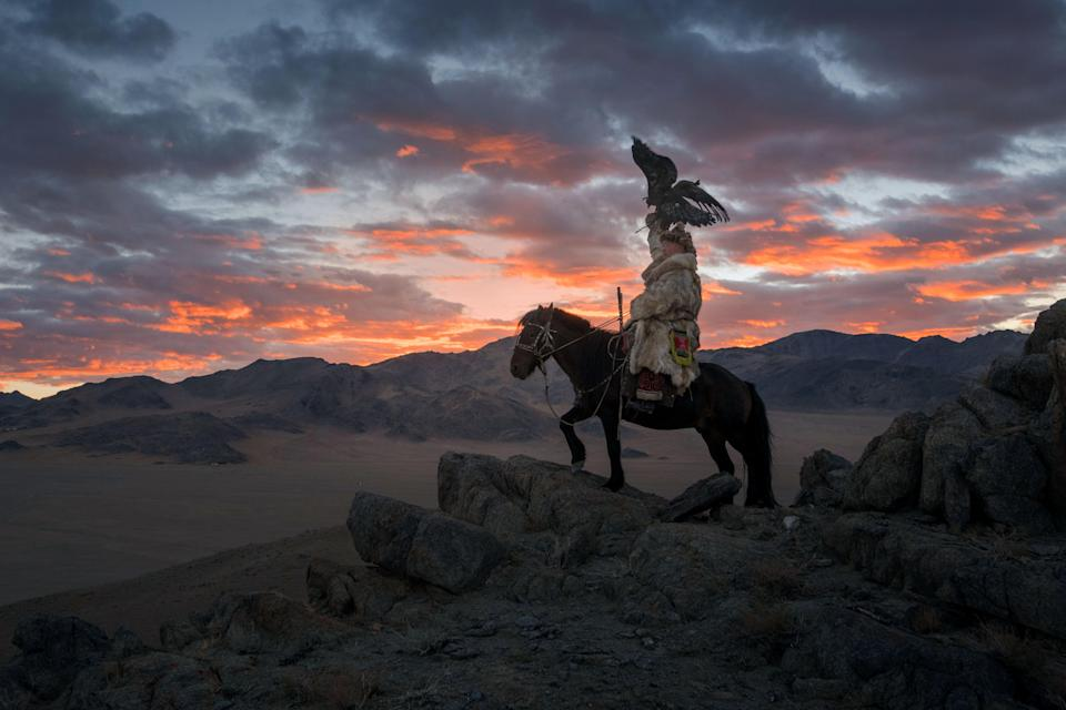 <p>The female birds are especially prized, as they are bigger and better hunters. (Photo: Daniel Kordan/Caters News) </p>