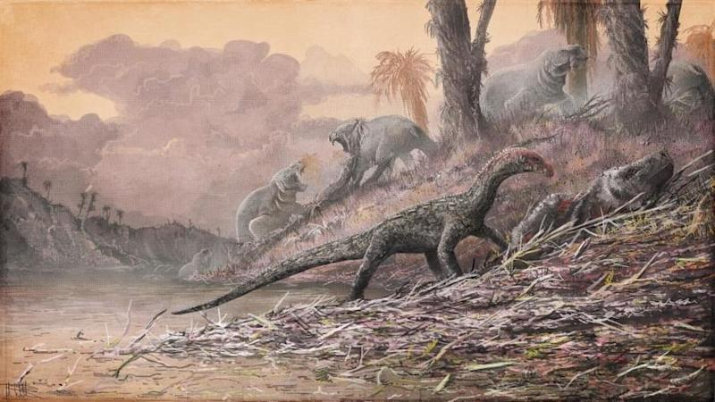 A Teleocrater rhadinus, a close relative of dinosaurs, is seen feasting on an ancient mammal relative, Cynognathus, in Tanzania during the Triassic period in this artist's impression. A large dicynodont Dolichuranus is seen in the background: Natural History Museum, London, artwork by Mark Witton