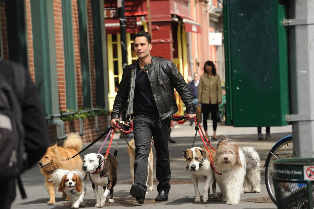 """New York City dog guru Justin Silver is the host of """"Dogs in the City."""""""