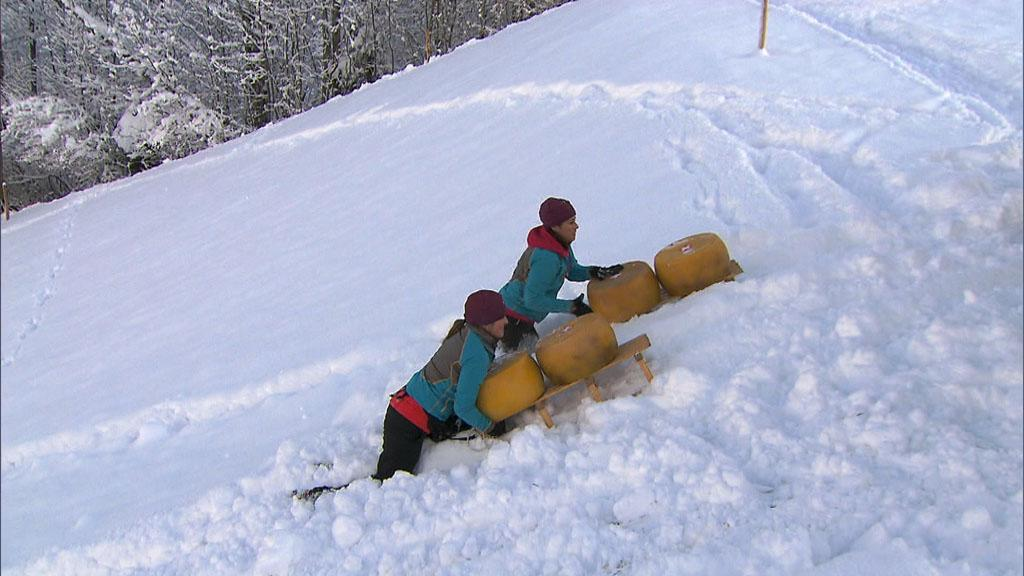 """My Cheese is Out of Control"" -- In this Active Route Marker, Roller Derby moms Beth (left) and Mona (right) must transport 200 pounds of cheese using a Swiss mountain sled on ""The Amazing Race."""