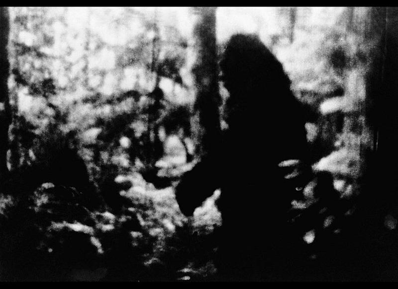 "This is a black and white print from a color movie Frank White said he took in the forest near Bellingham, Wash., on Oct. 8, 1977. ""I'd call it a North American ape,"" said White. ""You can call it a Sasquatch or anything you like."""