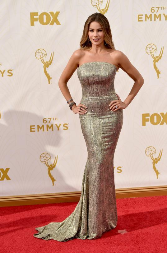 <p>Sofia Vergara wore a custom St. John gown covered in exploding sequins, but, most importantly, she was wearing her own scent on the red carpet and made Ryan Seacrest smell her wrist. </p>