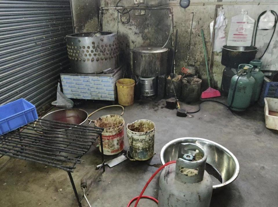 The rescuers said the conditions in the shop they rescued the cats from were concerning after detecting a foul smell and animal slaughter equipment. Photo: Handout