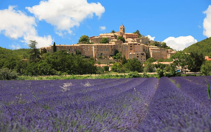 There is the sensual promise in Provence furnished by olive trees and lavender, the warmth, the light and the drinking of rosé under the stars. - Credit: JOHN KELLERMAN / Alamy Stock Photo