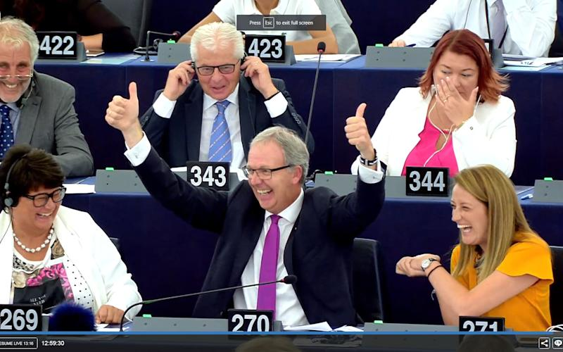 MEP Axel Voss celebrates as the European Parliament passes a dramatic overhaul of copyright reforms to reduce the power of Google and YouTube - European Parliament
